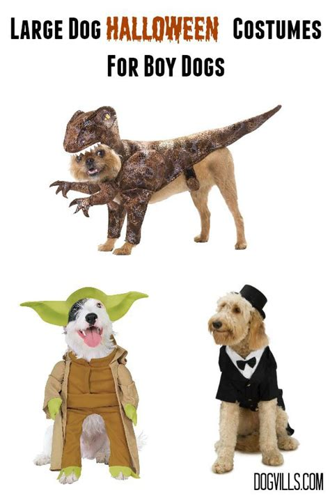 costumes for large dogs large costumes for your handsome fella dogvills