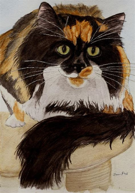 calico cat painting calico cat painting by joan pye