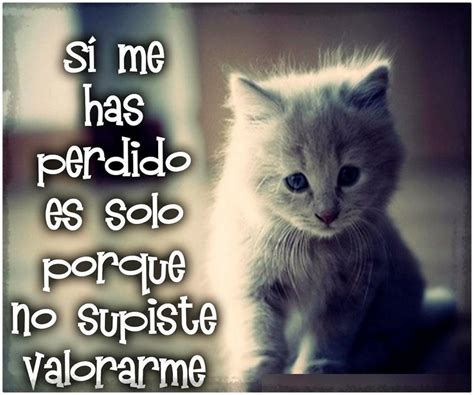 imagenes con frases muy tristes imagenes muy tristes de amor con frases fotos de tristeza