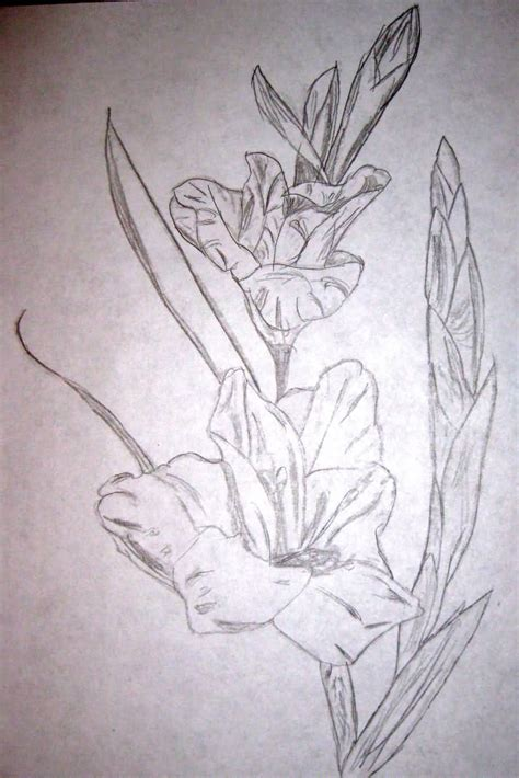 gladiolus flower tattoo 17 gladiolus tattoos designs