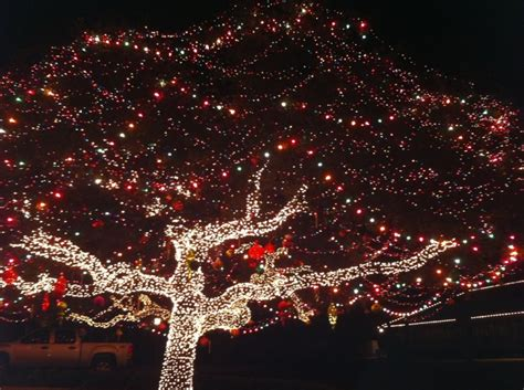 16 best texas hill country christmas images on pinterest