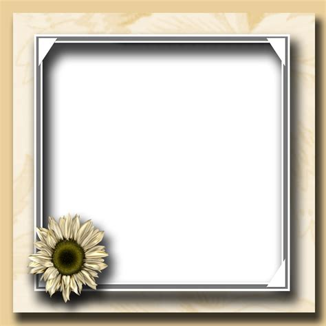 free frames ricaso freebies free flower photo frame