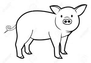 pig drawing images collections hd gadget windows mac android