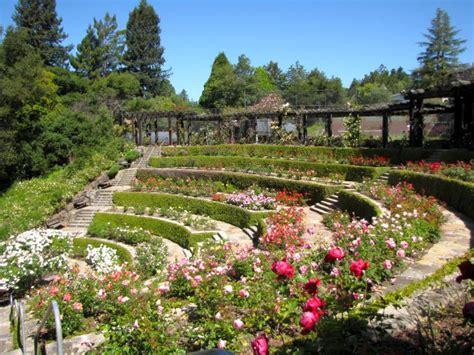 terraced backyard 17 fantastic terraced flower garden ideas