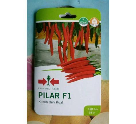 Benih Cabe Merah Besar benih panah merah cabe besar pilar f1 150 biji jual