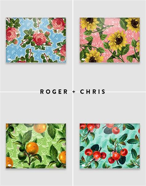 roger chris 17 best images about decor and pillows on pinterest