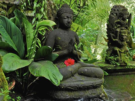 Buddha in the jungle on Bali wallpapers and images