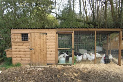Duck Sheds by Poultry House With Nestboxes And Large Adjoining Run