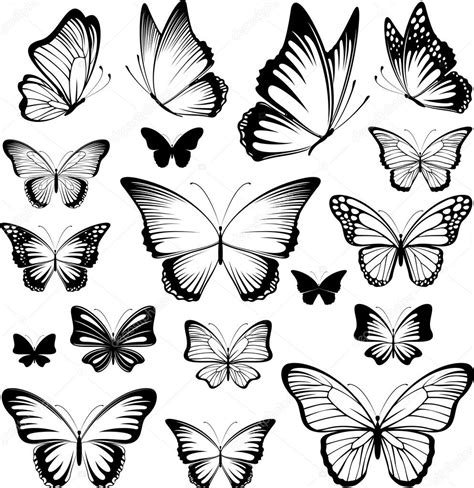 butterfly vector silhouettes stock vector 169 hayaship