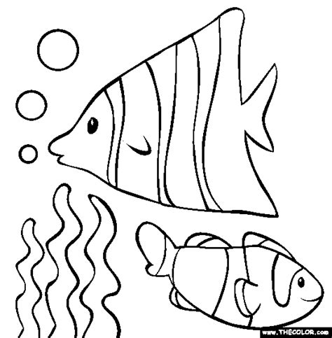 coloring page school of fish fish coloring page clipart panda free clipart images