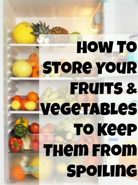 vegetables make me sick how to store fruits and vegetables to keep them from