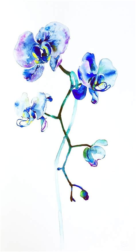 blue orchid tattoo best 20 blue orchid ideas on colorful
