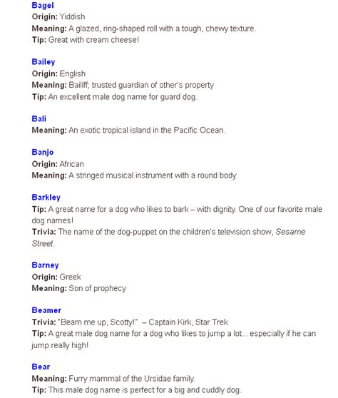 boy puppy names picture names with b