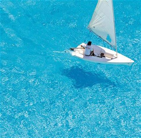 clearest ocean water in the world 24 best images about clearest water ever on pinterest