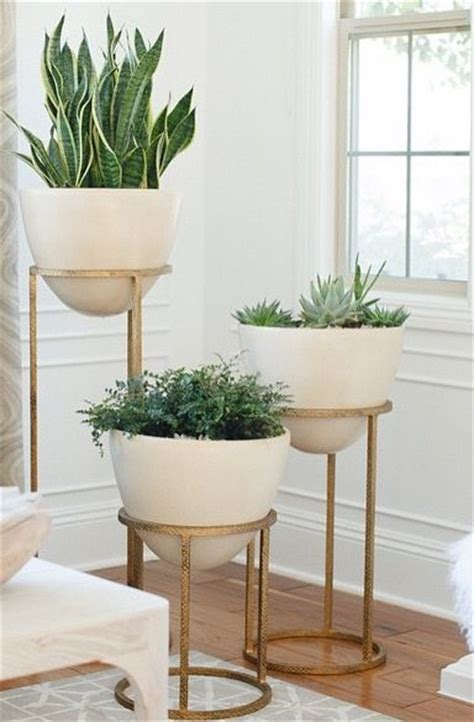 Planter Stands Indoors by 25 Best Ideas About Indoor Plant Stands On