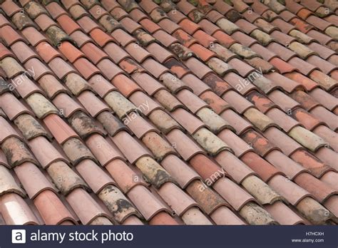 asphalt roof shingle home page contractors claims diagnosis of roof shingles itu0027s been 2 months after the new roof