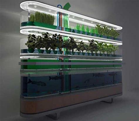 coltivazione idroponica in casa idroponica coltivazione orto in casa gardens interiors