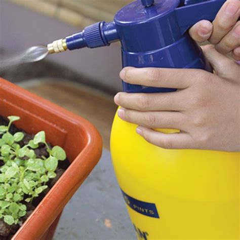 Best Insecticide For Vegetable Garden by 17 Best Ideas About Insecticide On
