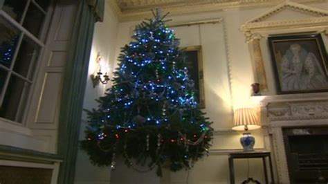 downing street christmas tree makes gower farmer proud