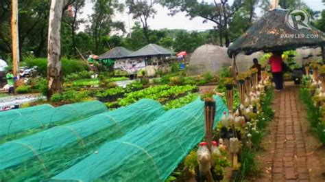 Square Meter by Making Farming Work In The Big City