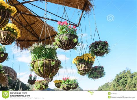 hanging flower garden outdoor garden designs with hanging flower pot with blue