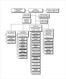 business chart templates sle business organizational chart 10 documents in pdf
