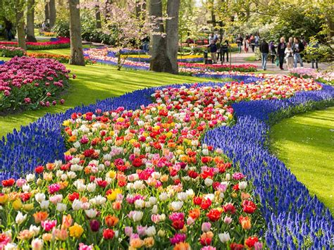 Most Beautiful Flower Gardens In The World Keukenhof Beautiful Flower Garden In The World