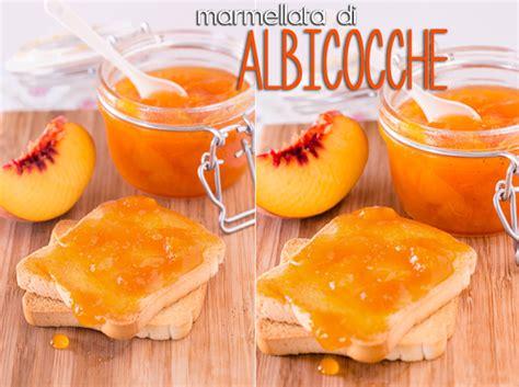 confettura di albicocche fatta casa ricette marmellata marmellata di albicocche