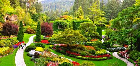 pictures of garden butchart gardens tour kenmore air
