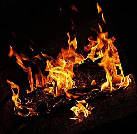 imagenes de corazones con fuego imagenes de fuego en movimiento foto blog cul 201 escudo