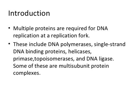 4 proteins in dna enzymes and proteins in dna replication