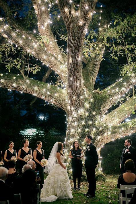 moonlight pennsylvania wedding   sparkling tree