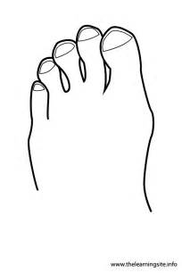 Outline Of The Human Parts by Human Outline Coloring Page Coloring Pages