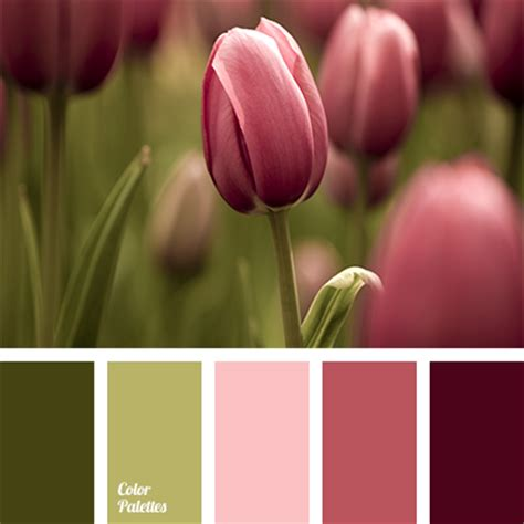 red and dark green color palette ideas olive and salad green color palette ideas
