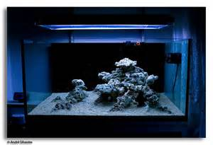 Reef Aquascaping Ideas by Minimalist Aquascaping Reef Tools