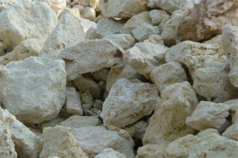 batu fosil kayu kapur dan kayu uli harga batu kapur limestone jual macam macam bahan