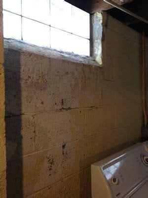 best 25 painting basement walls ideas on