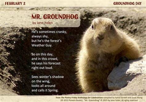 groundhog day espa ol 89 best images about poetry celebrations on in