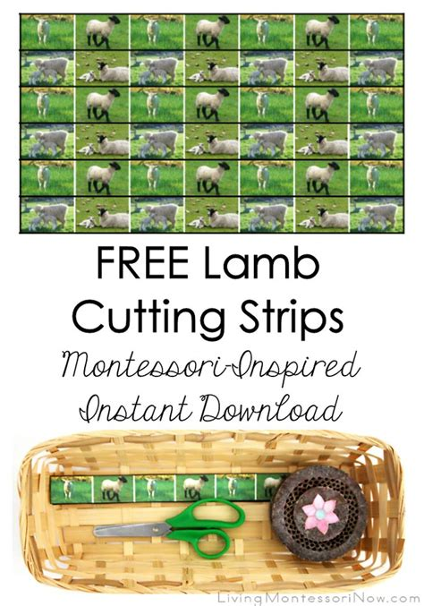 printable montessori cutting strips free lamb cutting strips montessori inspired instant