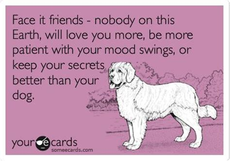 dog mood swings best friends mans best friend and puppys on pinterest