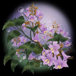 春の花 桐の花