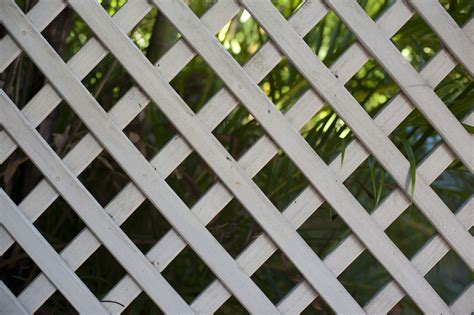 Wood Lattice Trellis Wooden Garden Trellis Free Backgrounds And Textures