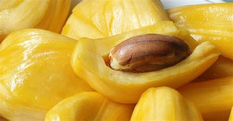 resep membuat puding nangka resep agar agar buah nangka paling enak resep cara