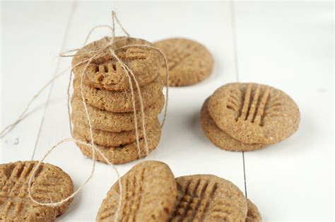 peanut butter cookies for dogs peanut butter doggie cookies for dogs ms bloglovin
