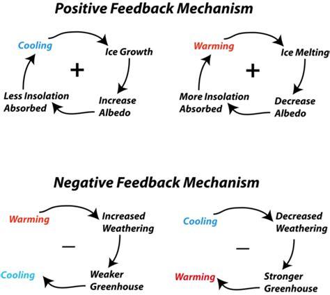 feedback loop diagram schematic diagram representing some of the feedback