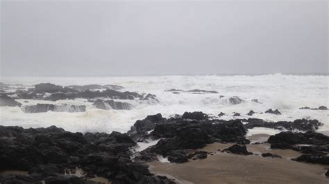 top 28 high tide oregon coast stock photo of high tide