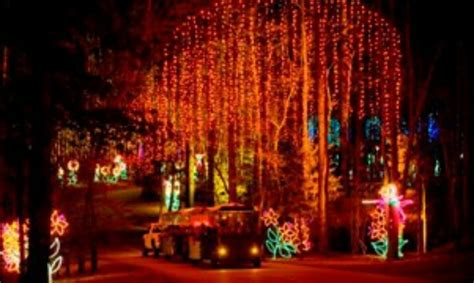 In Lights Callaway Gardens by Pin By Sheiladee On Happy Places