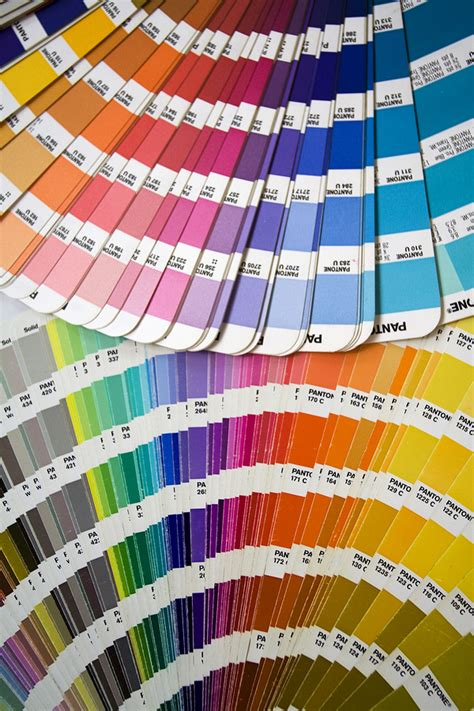 Color Planning For Interiors by Tips For Picking The Interior House Paint Ct Pro