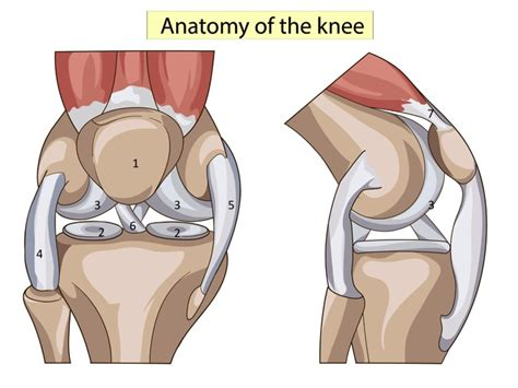 knieschmerzen innen schmerzen im knie welche therapien helfen wirklich