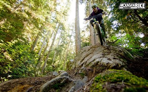 Mba Forest by Mountain Bike Magazine Free Wallpaper